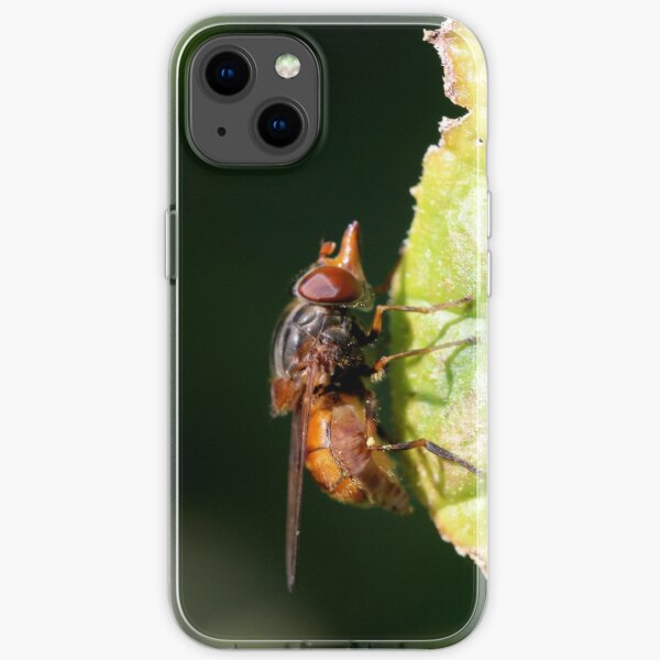 Why the Long Nose? iPhone Soft Case