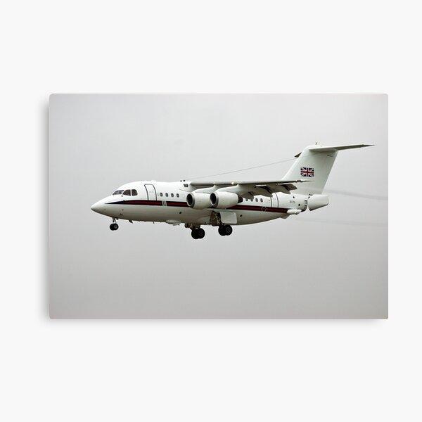Royal Flight Canvas Print