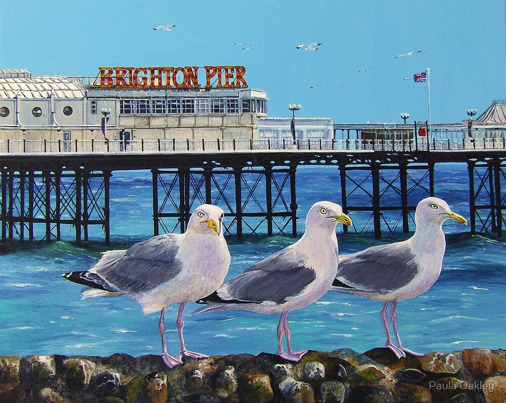 Seaside Seagulls by Paula Oakley