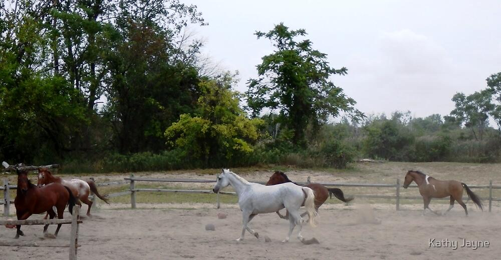 Trot by Funmilayo Nyree
