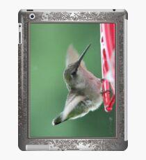 Female Ruby-Throated Hummingbird iPad Case/Skin