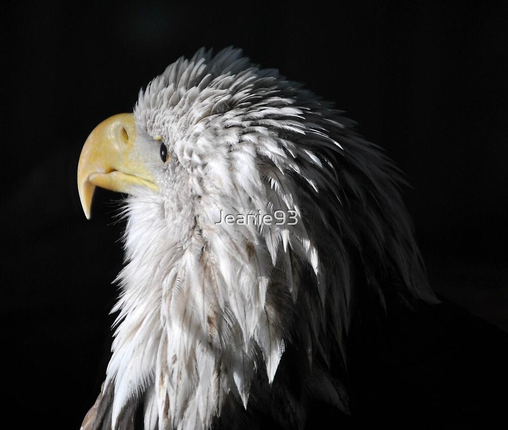 Sam Eagle 6 by Jeanie93