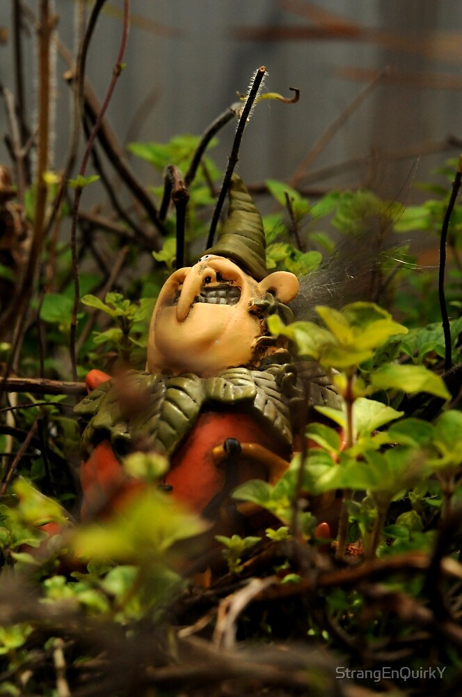 Gnome Patrol by StrangEnQuirkY