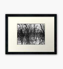 Black and White Branches Framed Print