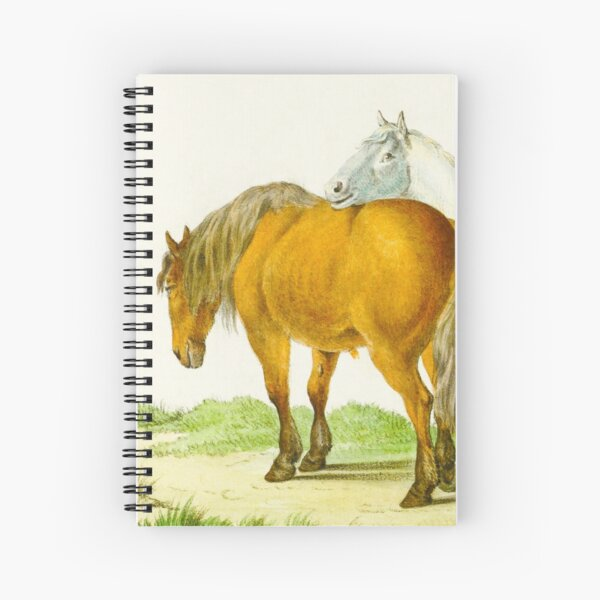 Two Horses in a Field Sketch Spiral Notebook