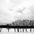 White Sky by DearMsWildOne