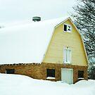 Yellow Barn, Open Window by DearMsWildOne