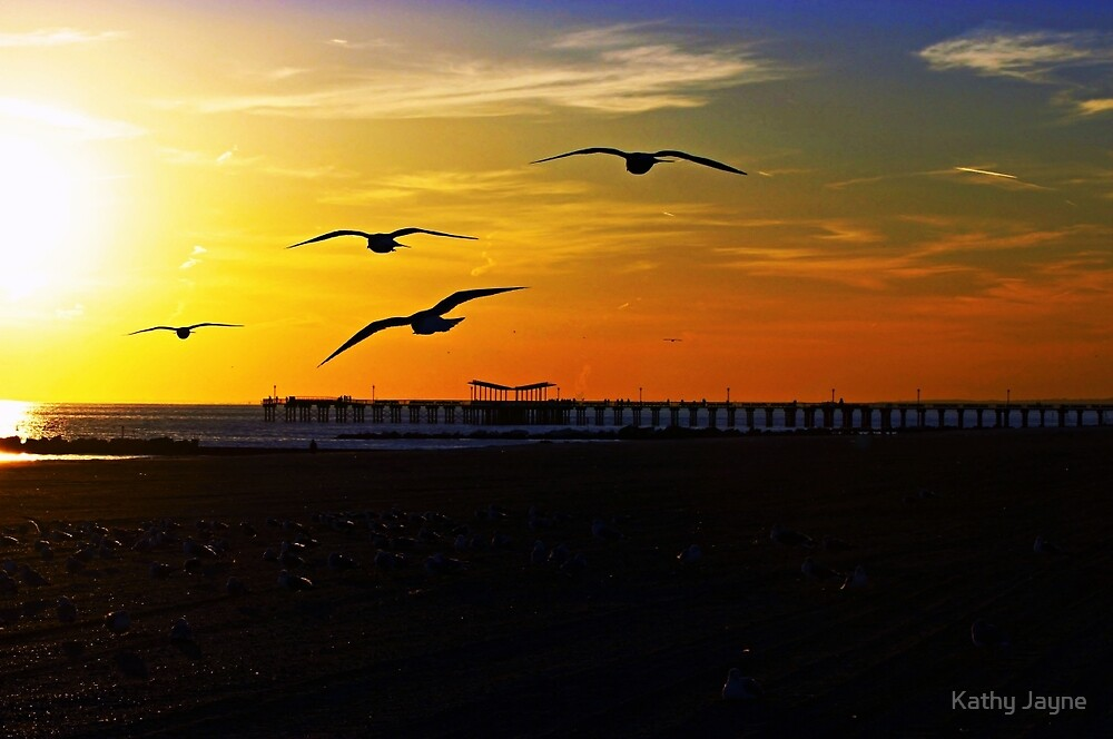 Sea Gulls Over Coney Island by Funmilayo Nyree