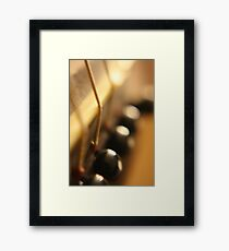 The Macro Experiment - Groton, Connecticut Framed Print