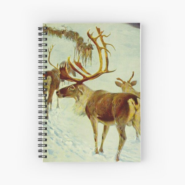 Reindeer Sketch Spiral Notebook
