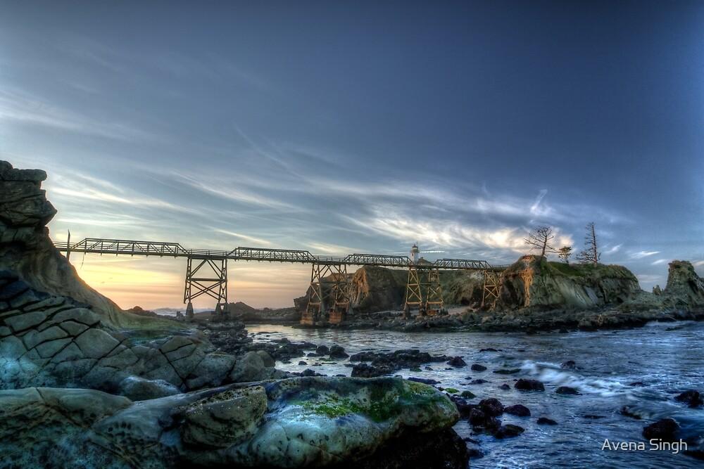 Cape Arago Lighthouse by Avena Singh