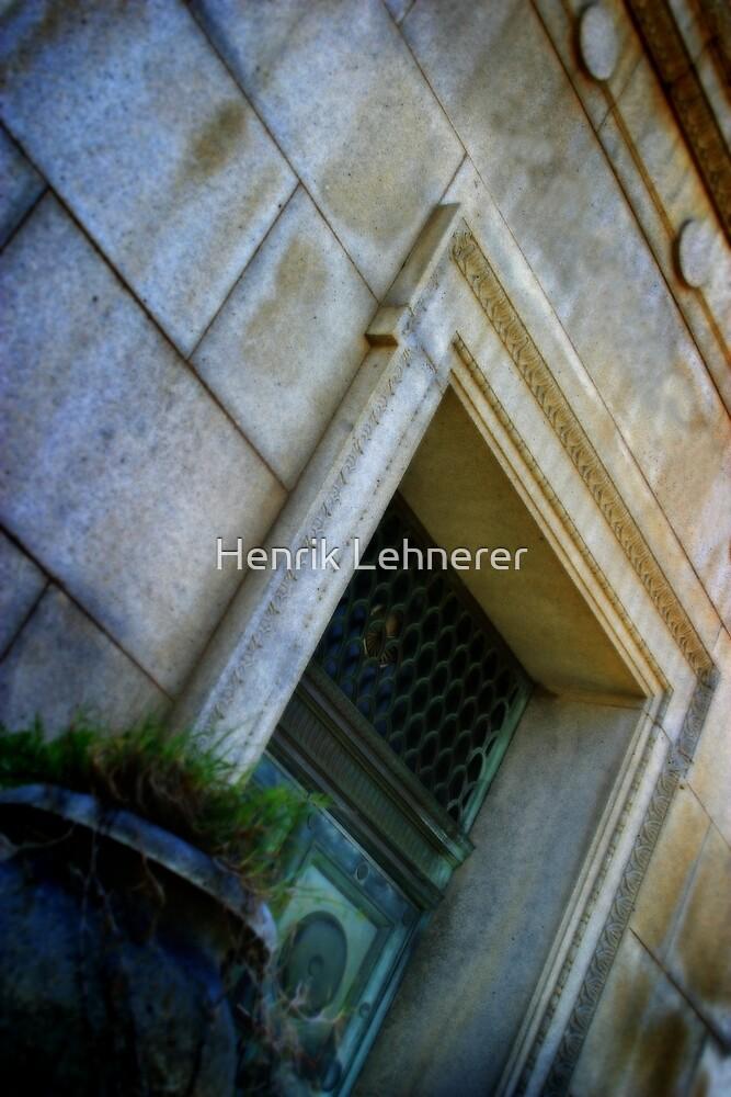 The Last Door by Henrik Lehnerer