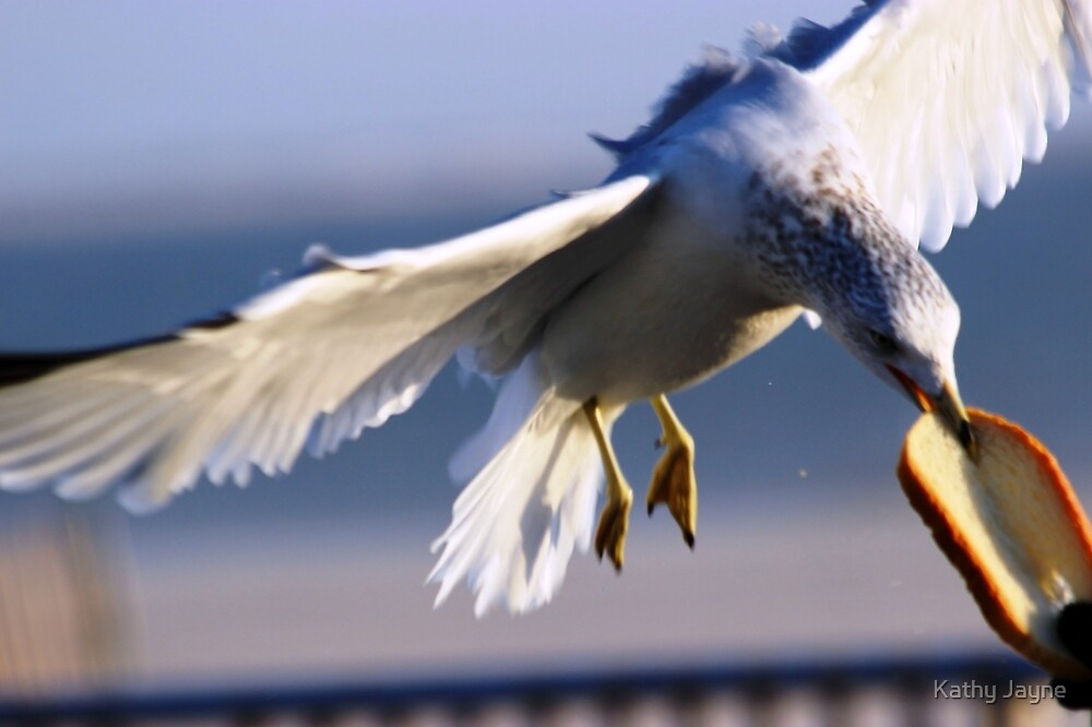 Sea Gull At Lunch by Funmilayo Nyree