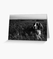 Spice Dog Portrait Greeting Card