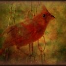 The Cardinal Look by DottieDees