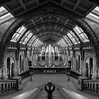Natural History Museum 6 by John Velocci