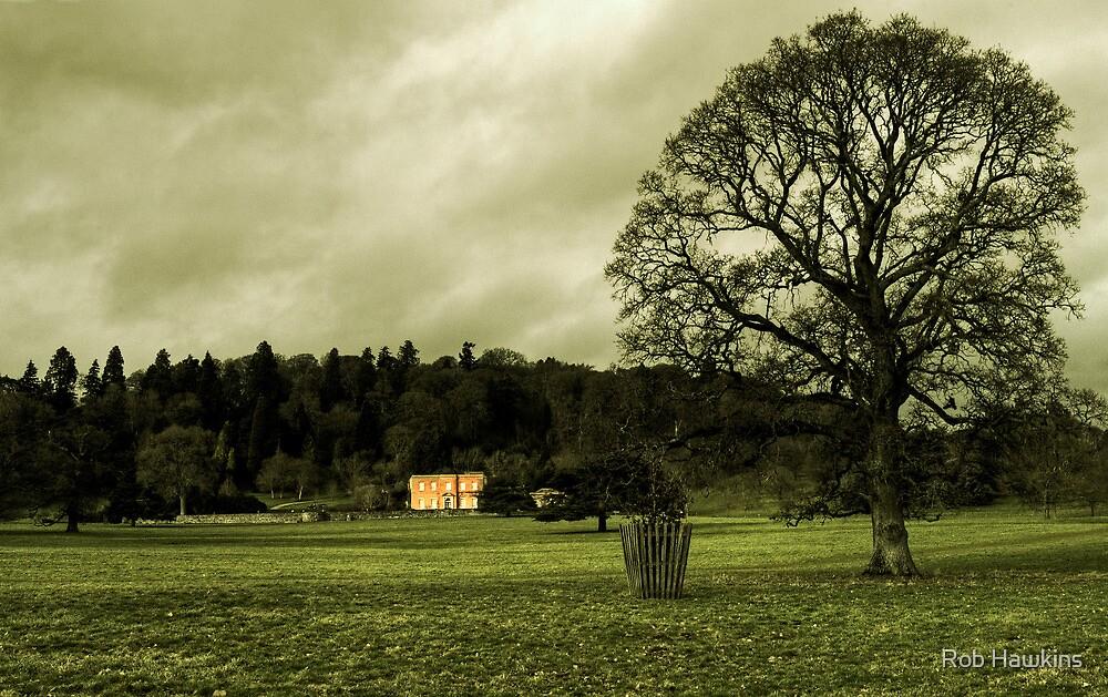 Killerton in winter by Rob Hawkins
