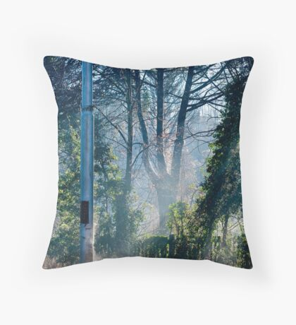 Morning at the Station take one Throw Pillow