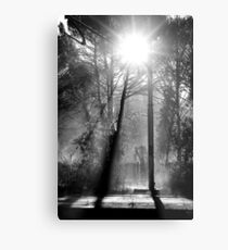 Morning at the Station take three Metal Print