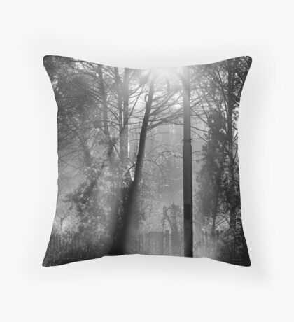 Morning at the Station take three Throw Pillow