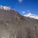 Twin peaks by Steve plowman