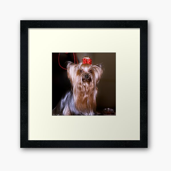 I'm a 10! Framed Art Print