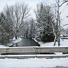 Winter Stream by tachamot