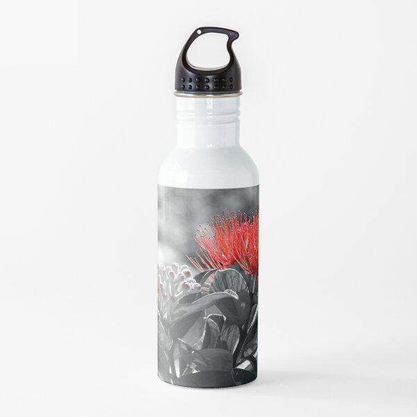 Metrosideros Thomasii  Water Bottle
