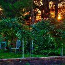 Sunset Over the Garden by Monica M. Scanlan