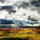 Before the rain by fenist