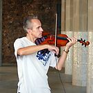 Vivaldi in Barcelona!! Park Guelle! by artfulvistas
