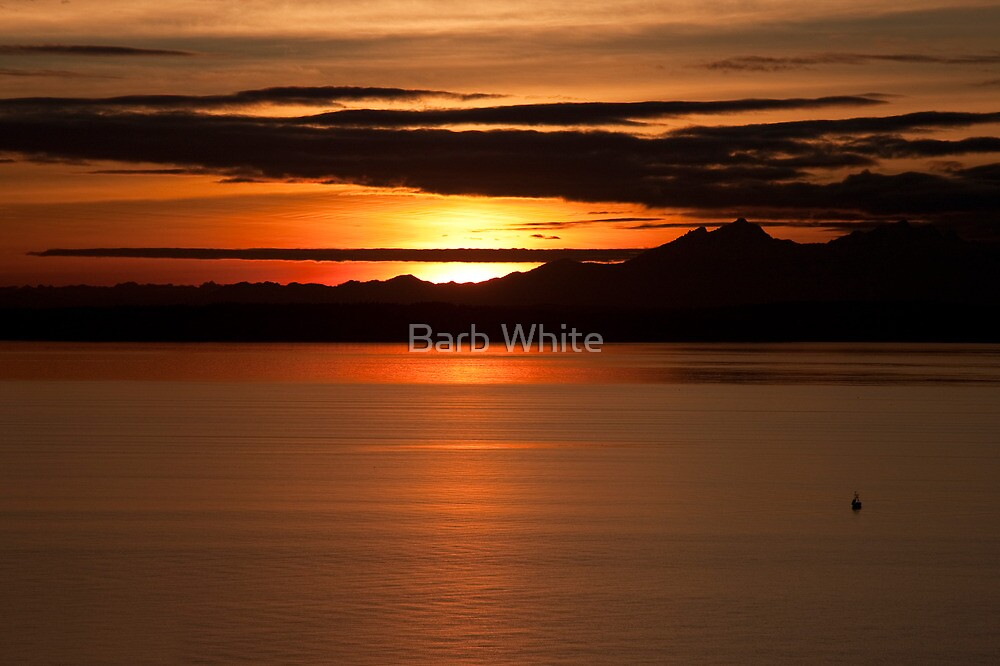 Sunset on Puget Sound by Barb White