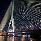 Chao Phraya Suspension Bridge by phil decocco