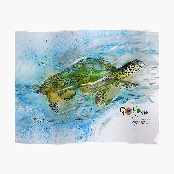 The Endangered Hawksbill Turtle Poster