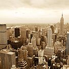 New York cityscape by sumners