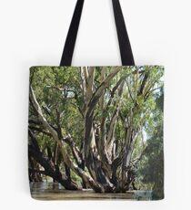 flood waters Tote Bag