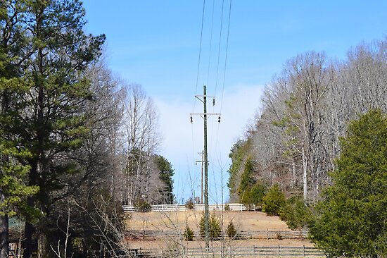 Power lines of Greenwood by Katie Smith