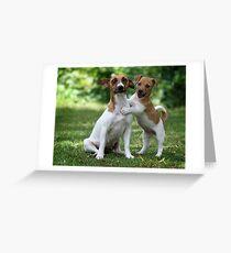 Something to make you smile  Greeting Card