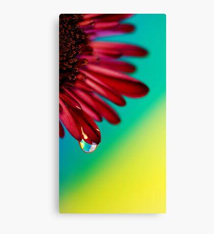 Shiny Happy Feelings Canvas Print