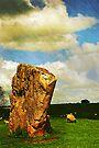 Avebury henge, Wiltshire, UK by David Carton