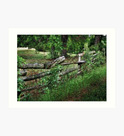 Country Fence Art Print