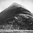 The False Peak by Thomas Fitzgerald