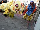 lion dance for u... by LisaBeth