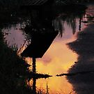 Reflection by fenist
