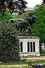 The Maiwand Lion, Reading, UK by David Carton