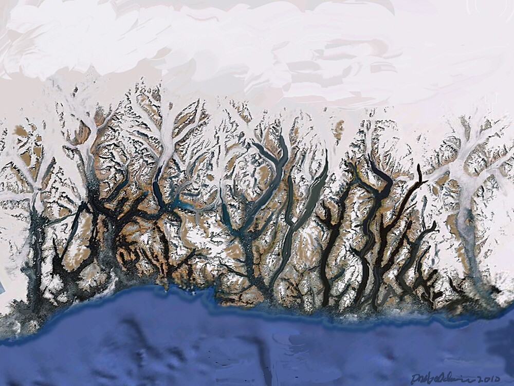 """Winter Reach""  by Patrice Baldwin"