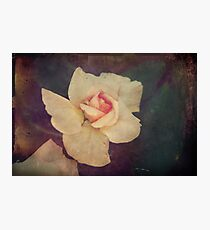 Open Your Heart Photographic Print
