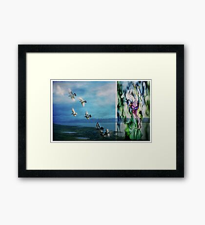 Dreaming of Peace Framed Print