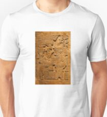 TEOTIHUACAN, Mexico Unisex T-Shirt