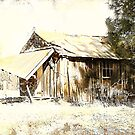 Old Homestead by pat gamwell
